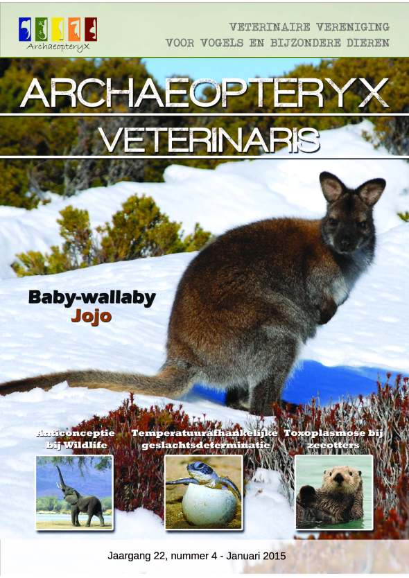 The most recent edition of the Dutch veterinary magazine Archaeopteryx Veterinaris.